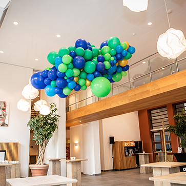 Ballonnen Driesen